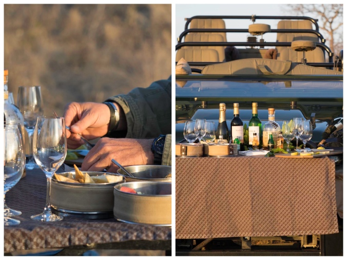 Sundowner Collage (Singita)
